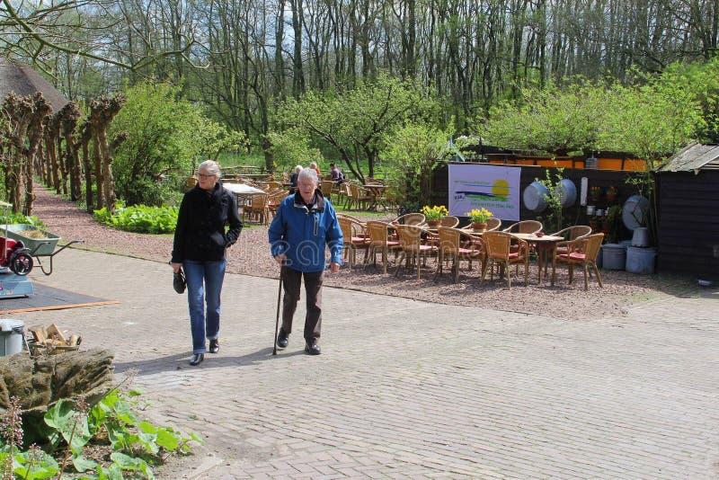 El padre y la hija están visitando el jardín de té, Eemnes, Países Bajos imagenes de archivo