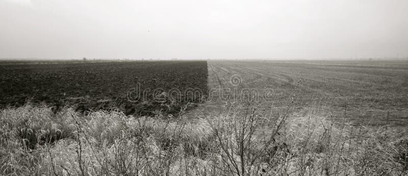 El paisaje - contraste natural foto de archivo