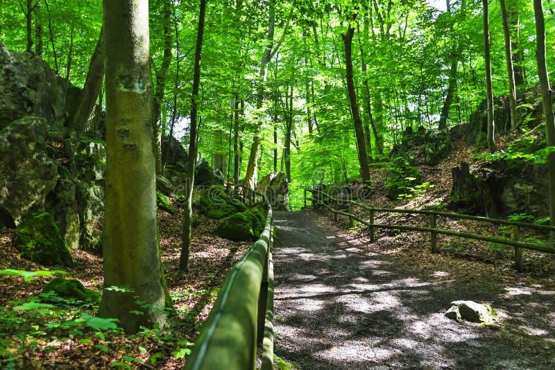El paisaje de Felsenmeer Alemania imágenes de archivo libres de regalías