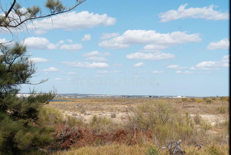 El paisaje de la isla de Tavira vista de AR preservada imágenes de archivo libres de regalías
