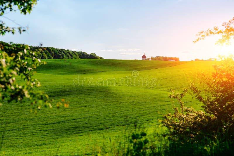 El paisaje de la mañana con el campo verde, rastros de tractor en sol irradia imagenes de archivo