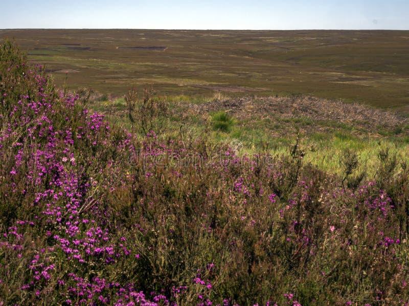 El paisaje de North Yorkshire amarra fotografía de archivo libre de regalías