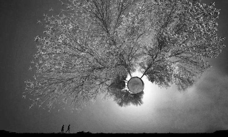 El paisaje de un mundo desconocido y fantástico llamó 'el pequeño planeta ' fotografía de archivo libre de regalías