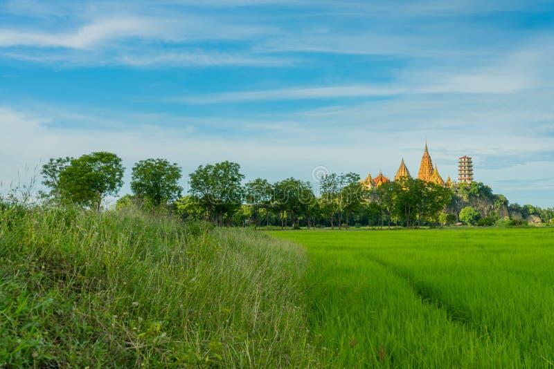 El paisaje del campo del arroz antes de la puesta del sol en Wat Tham Sua en K fotografía de archivo libre de regalías