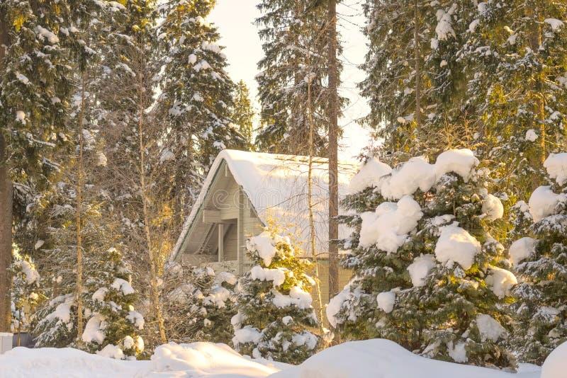 El paisaje del invierno se cubre todo con la nieve y el hielo, el frío fotos de archivo