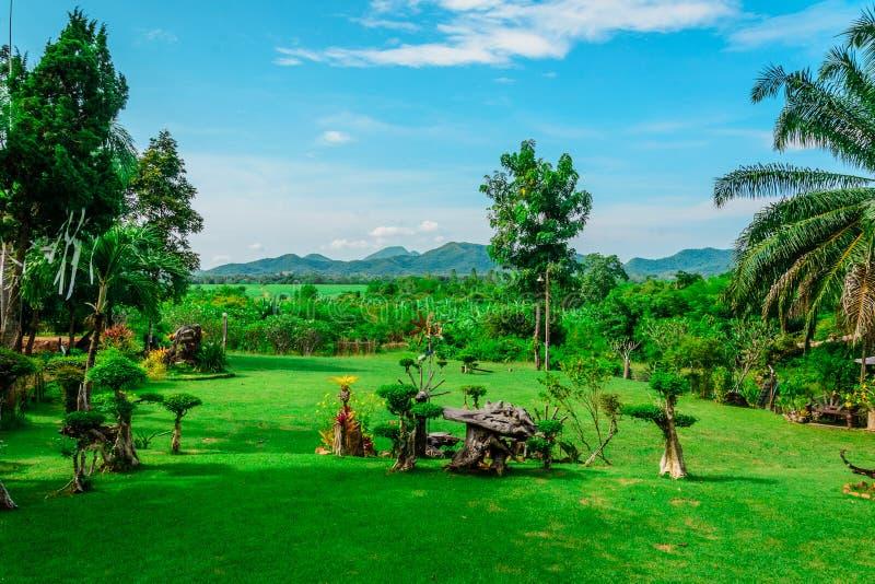 El paisaje del jardín en d3ia fotografía de archivo