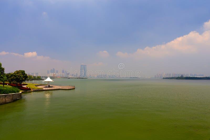 El paisaje del lago fotografía de archivo libre de regalías