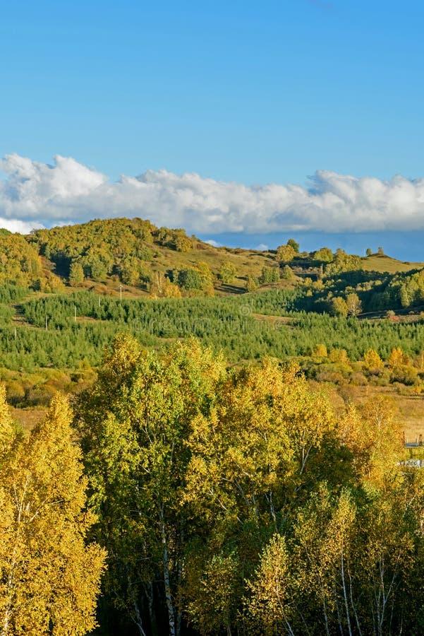 El paisaje del otoño de la pradera fotos de archivo libres de regalías