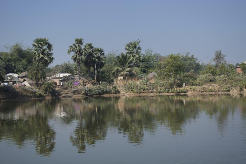 El paisaje del pueblo rural de Bengala en la India es tan tranquilo y pacífico imagen de archivo libre de regalías