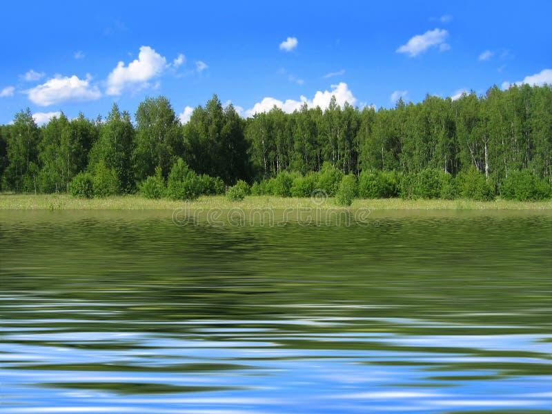 El paisaje del verano reflejó en agua fotografía de archivo