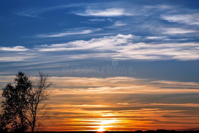 El paisaje es verano El cielo está color brillante azul rojo anaranjado por la tarde en la puesta del sol y la silueta de un árbo fotografía de archivo