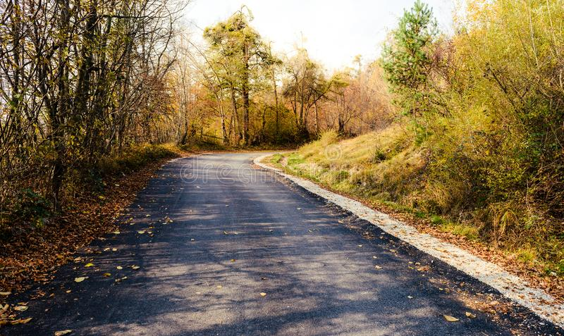 El paisaje escénico soñador de la carretera de asfalto a través de la naranja del otoño corteja foto de archivo