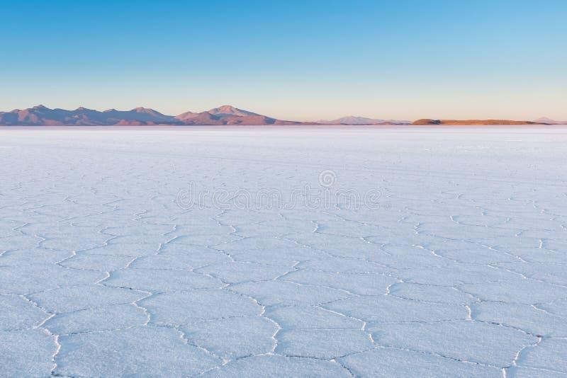 El paisaje extenso blanco asombroso del llano más grande de la sal del mundo en Salar De Uyuni Salt Flat, Bolivia con el cactus fotografía de archivo libre de regalías