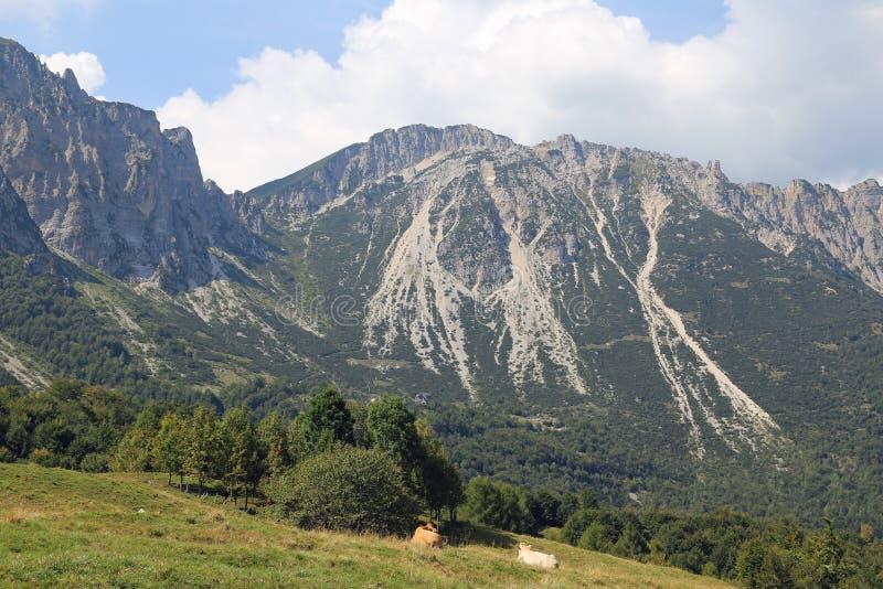 el paisaje maravilloso de montañas italianas llamó a Venetian Prealps fotos de archivo