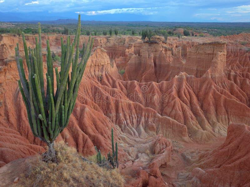 El paisaje marciano de Cuzco, el desierto rojo, parte del desierto del ` s Tatacoa de Colombia fotos de archivo libres de regalías