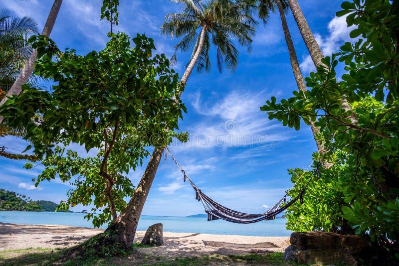El paisaje marino consiste en el cielo azul, las palmeras del coco, la playa blanca de la arena, el kajak, la hamaca y la agua de fotos de archivo