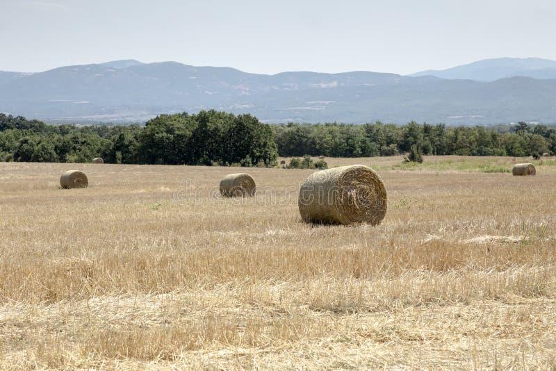 El paisaje rural del verano con la paja rueda en el campo imagenes de archivo