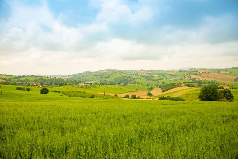 El paisaje rural en el verano coloca en la provincia italiana de Ancona en Italia foto de archivo