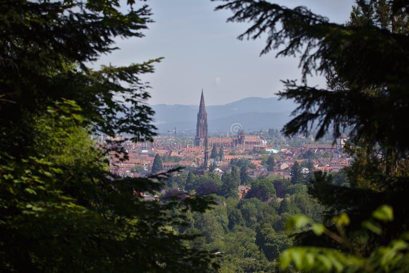 El paisaje urbano de Friburgo con Munster enmarcó con los árboles fotografía de archivo