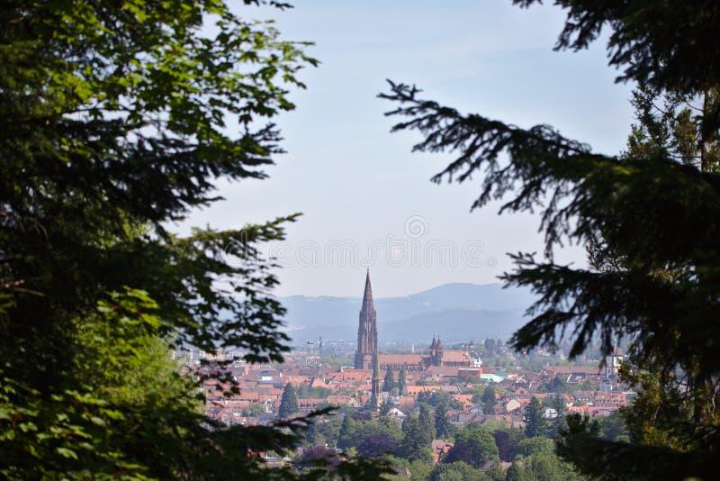 El paisaje urbano de Friburgo con Munster enmarcó con los árboles imagenes de archivo