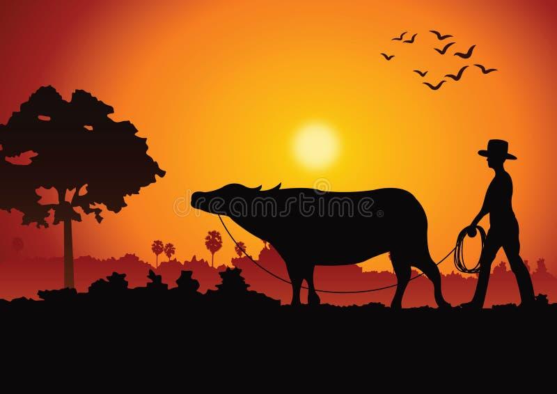 El paisaje y la vida en el campo de la puesta del sol con un hombre llevan el búfalo alrededor con el árbol campo de la forma de  libre illustration