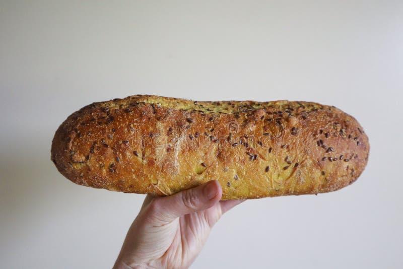 El pan del pan amargo de la pasta se sostuvo a disposición en fondo llano imagen de archivo