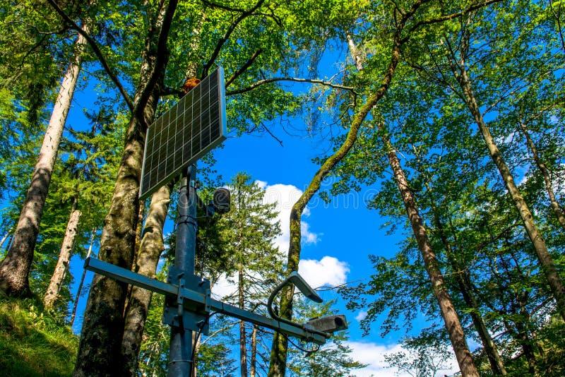El panel solar iluminado por el sol en el bosque fotos de archivo libres de regalías