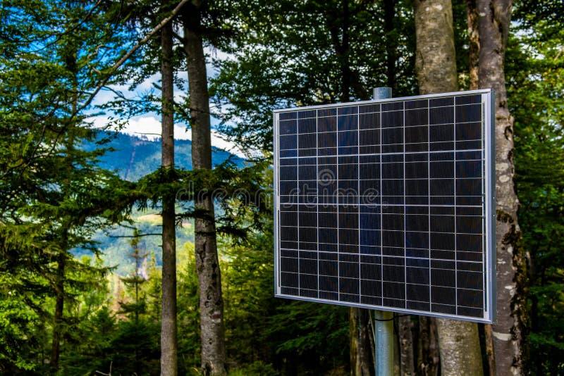 El panel solar iluminado por el sol en el bosque foto de archivo libre de regalías