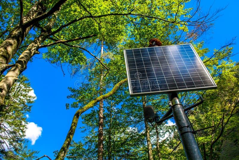 El panel solar iluminado por el sol en el bosque fotos de archivo