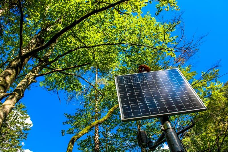 El panel solar iluminado por el sol en el bosque imagen de archivo