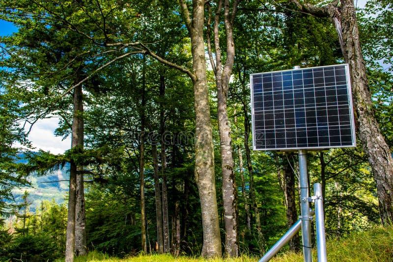 El panel solar iluminado por el sol en el bosque imágenes de archivo libres de regalías