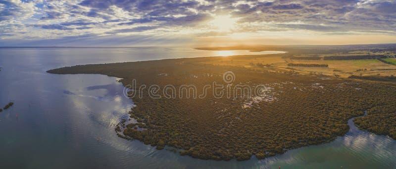 El panorama aéreo de mangles acerca a la costa costa del océano en la puesta del sol hermosa foto de archivo libre de regalías
