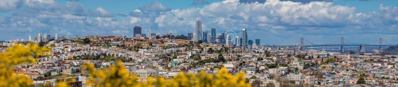 El panorama del horizonte de San Francisco con la floración florece en la delantera fotos de archivo