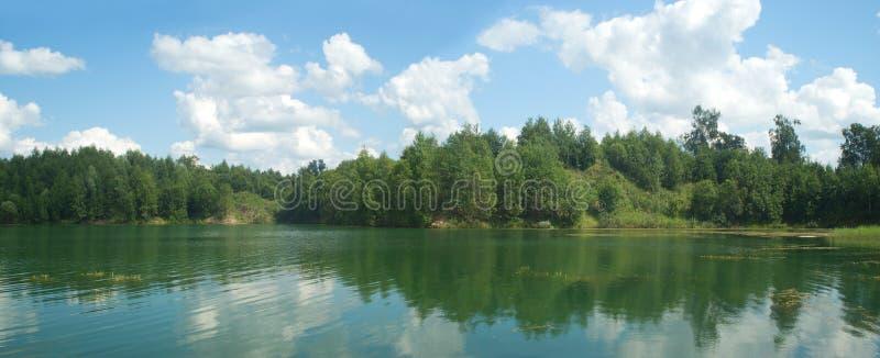 El panorama del paisaje del verano con los árboles acerca al lago fotos de archivo libres de regalías