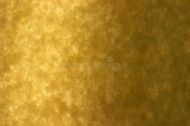 El papel amarillo reciclado especial sostenido se encendió para arriba con luz del sol fotografía de archivo libre de regalías
