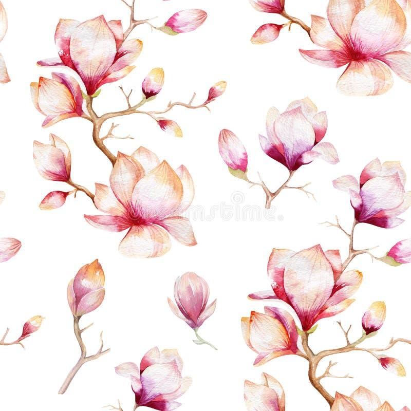 El papel pintado inconsútil de la acuarela con la magnolia florece, las hojas libre illustration