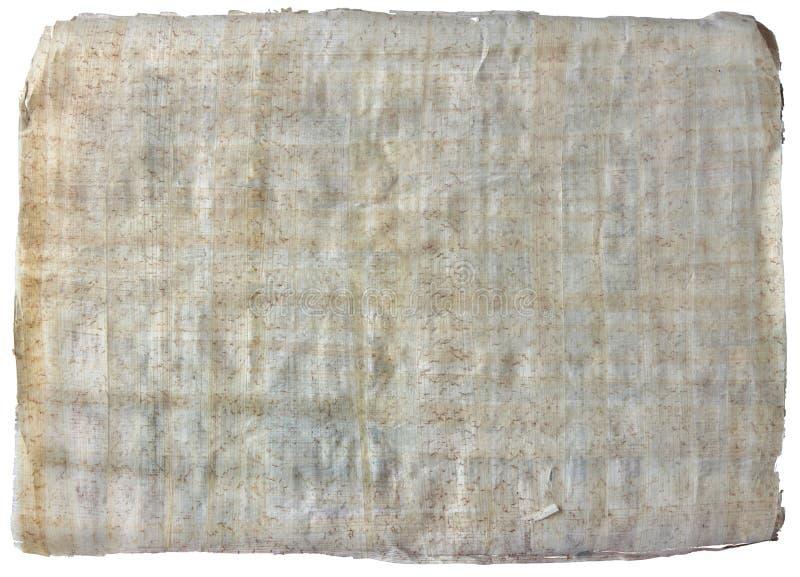 El papiro imágenes de archivo libres de regalías