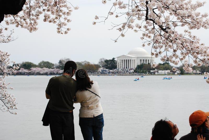 El par disfruta de festival del flor de cereza de Washington imagen de archivo libre de regalías