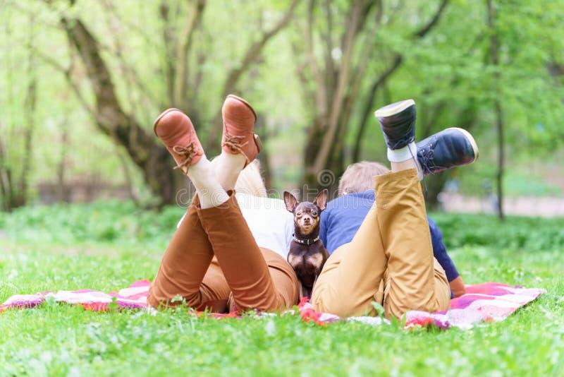 El par europeo atractivo joven con el pequeño perro entre ellos está consiguiendo basar en la manta en algún parque del verano en fotos de archivo