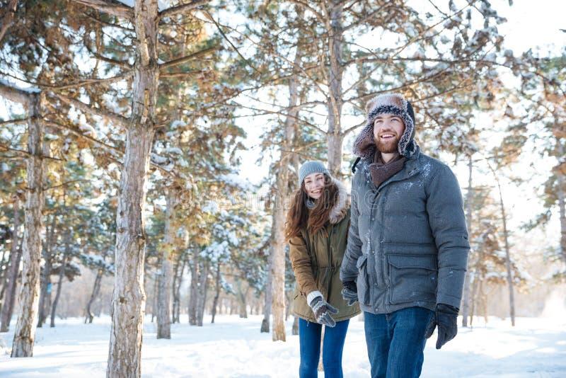 El par feliz hermoso en invierno viste caminar al aire libre foto de archivo libre de regalías