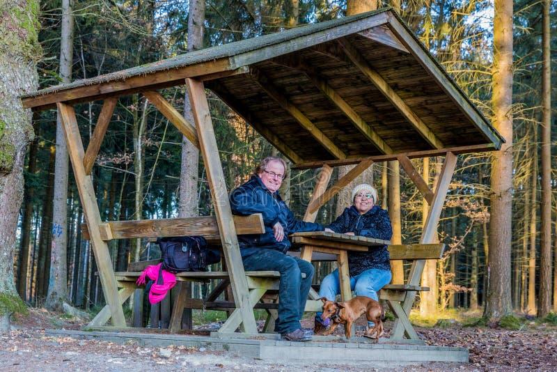 El par feliz que descansa en una mesa de picnic que sostiene las manos y su perro está jugando imagen de archivo