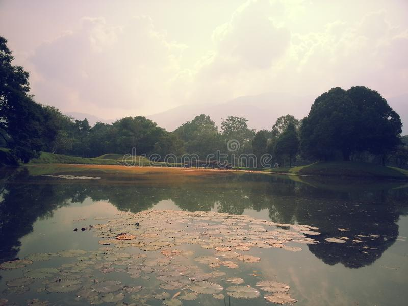 El parque del verano es realmente caliente fotografía de archivo libre de regalías