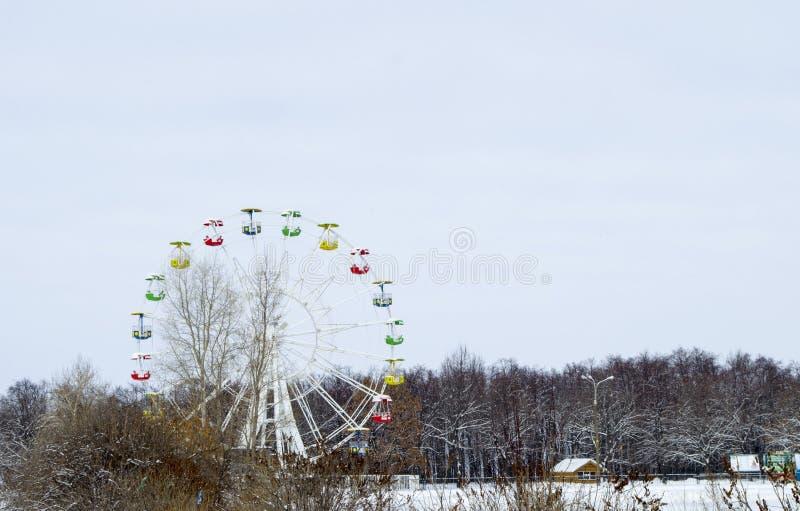 El parque en el bosque imágenes de archivo libres de regalías