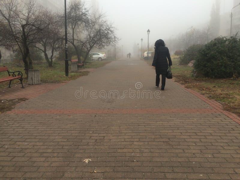 El parque en la niebla imagen de archivo