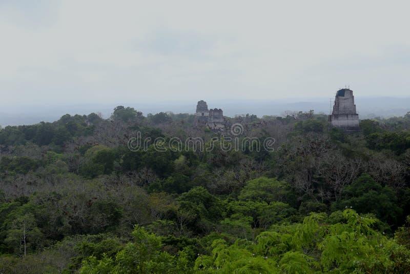 El parque nacional de Tikal cerca de Flores en Guatemala, templo del jaguar es la pirámide famosa en Tikal imagenes de archivo