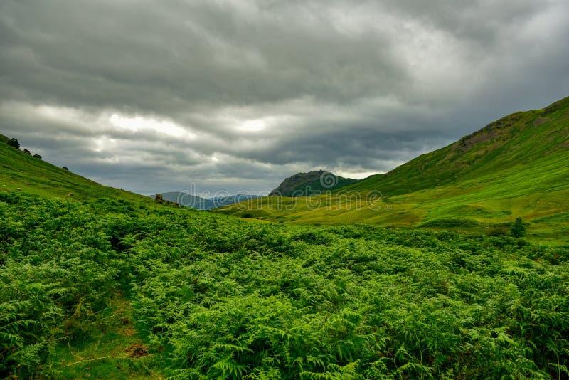 El parque nacional del distrito del lago imágenes de archivo libres de regalías