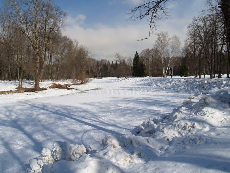 El parque se cubre con nieve Pavlovsk, Rusia foto de archivo libre de regalías