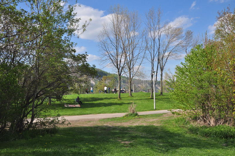 El parque Toronto del farolero ENCENDIDO fotografía de archivo libre de regalías