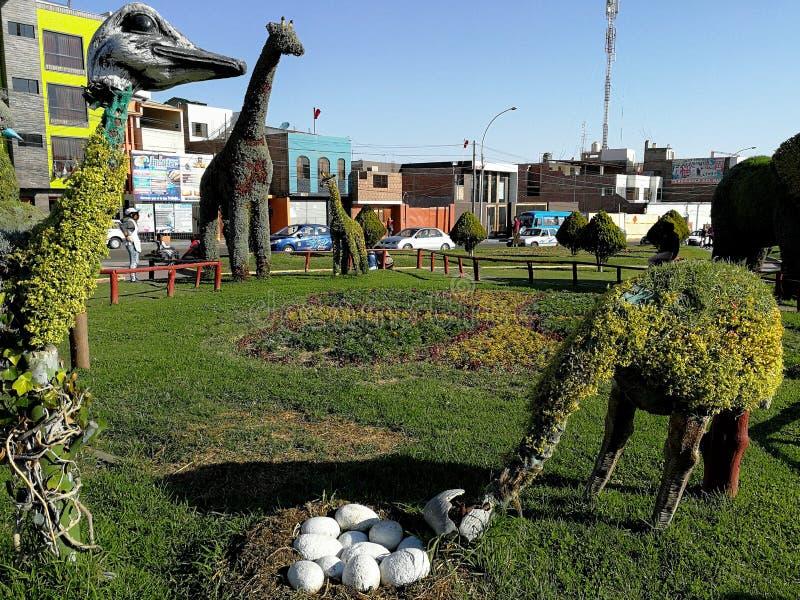 El parque zoológico de la hierba imagen de archivo libre de regalías