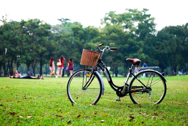 El parquear en el parque fotografía de archivo libre de regalías